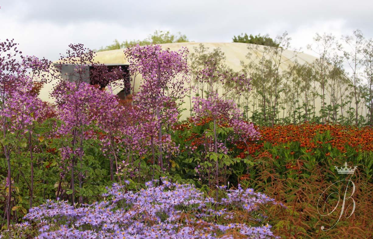 Photography by b blackwell piet oudolf garden hauser for Piet oudolf pflanzplan