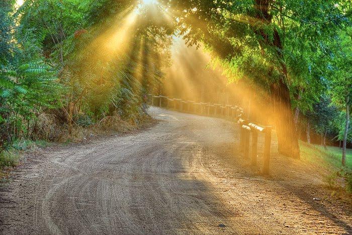 El blog de marcelo c mo enfrentar los problemas for Affitti cabina michigan con camino