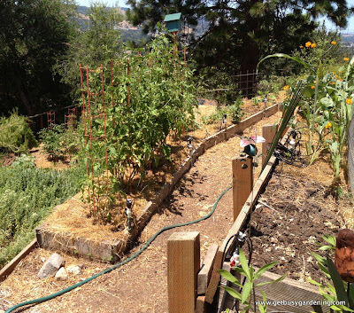 Tiered vegetable garden