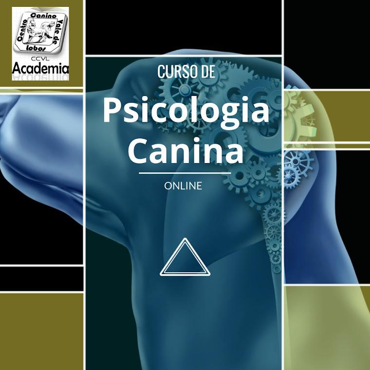 """Curso de """"Psicologia Canina"""""""