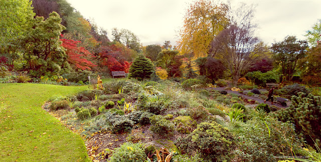 a panoramic view of Branklyn Garden in October