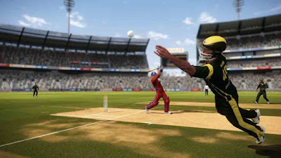 Don Bradman Cricket 14 PC Version