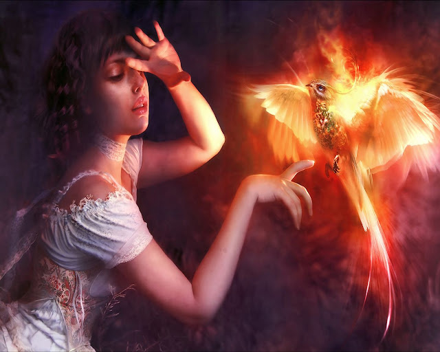 flame bird,fantasy art,5 stars