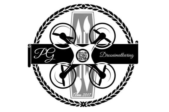 Pelgulinna Gümnaasiumi Droonimatkaring
