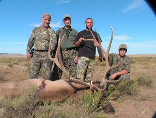 Elk Hunting Arizona