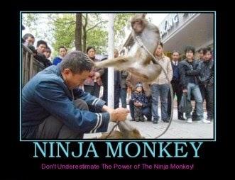 ninja-monkey-meme-pic