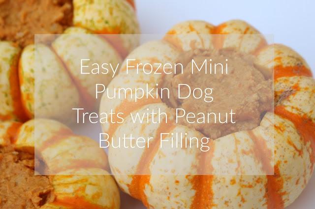 Easy Frozen Mini Pumpkin Dog Treats with Peanut Butter Filling Domesticability.com