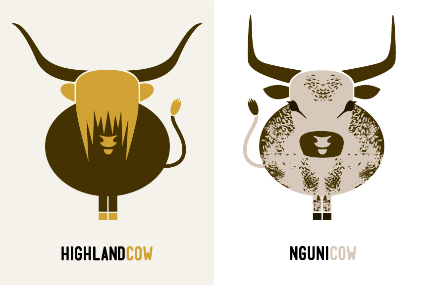 highland cow illustration, nguni cow illustration