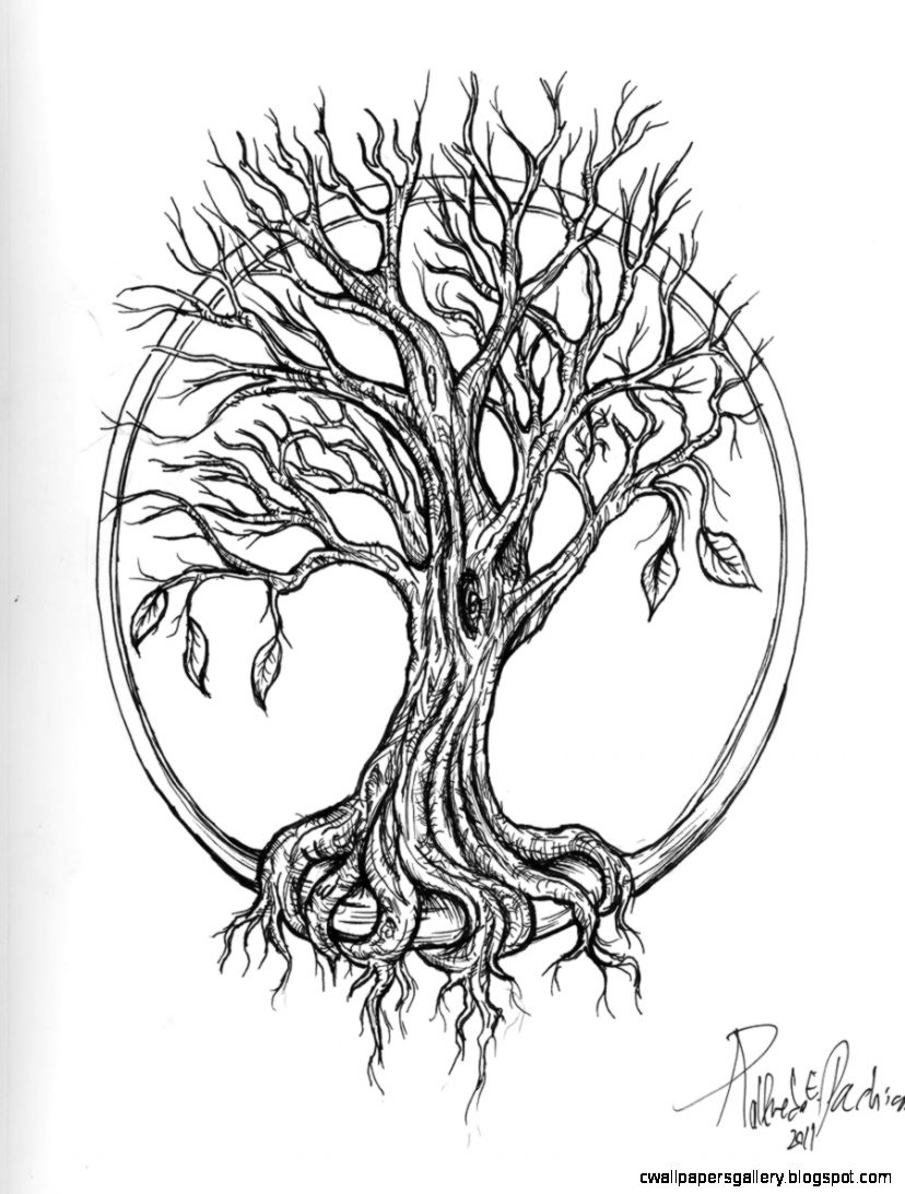 tree tattoo by Kittencaboodles on DeviantArt