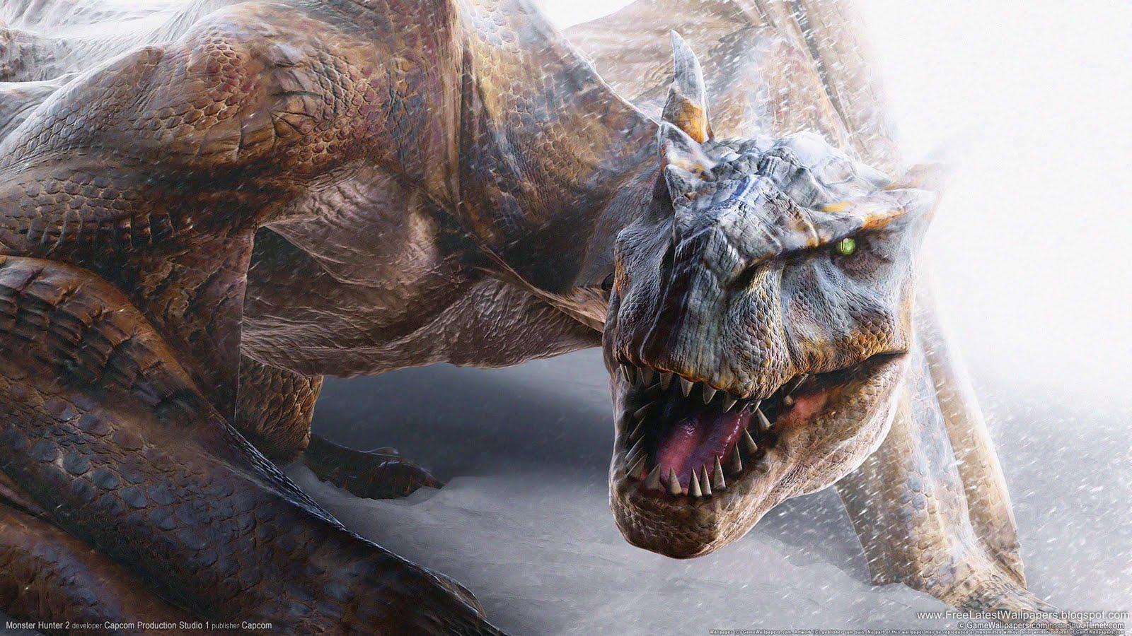 http://3.bp.blogspot.com/-1JMQDSK6obY/TaHUUJIqLmI/AAAAAAAACXc/Tt5A3h3_6rU/s1600/monster_hunter_2-HD.jpg
