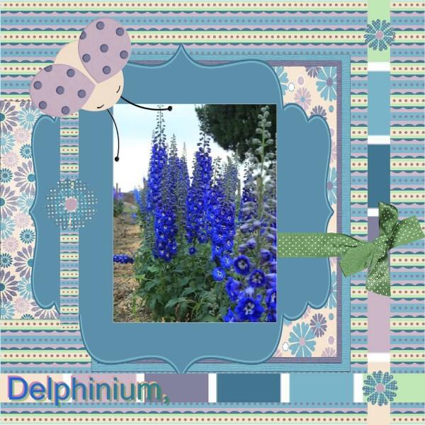 April 2016 – Delphinium