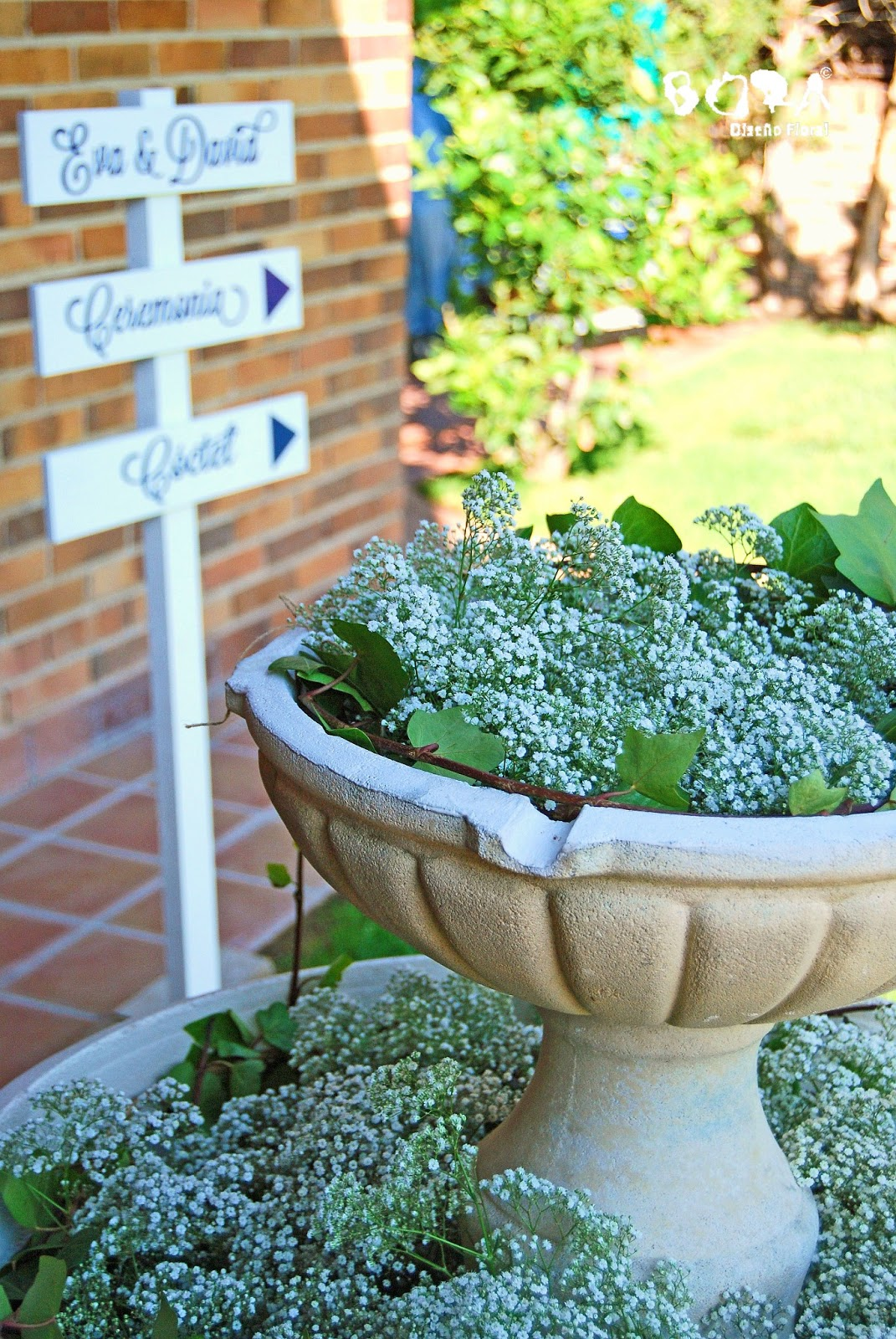 fuente decorada con paniculata