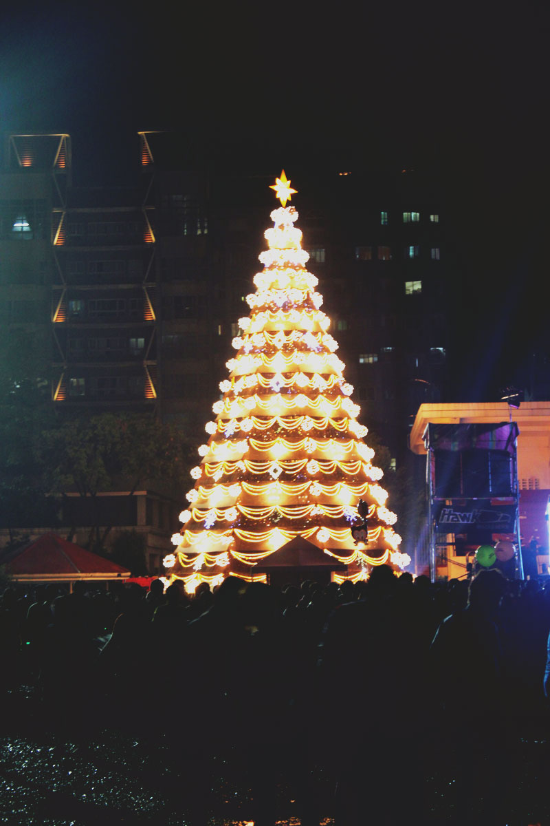 UST Paskuhan 2013