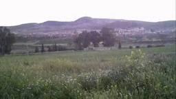 احلى صور فصل الربيع في مدينة بلدية عمي موسى ولاية غليزان AMMI MOUSSA