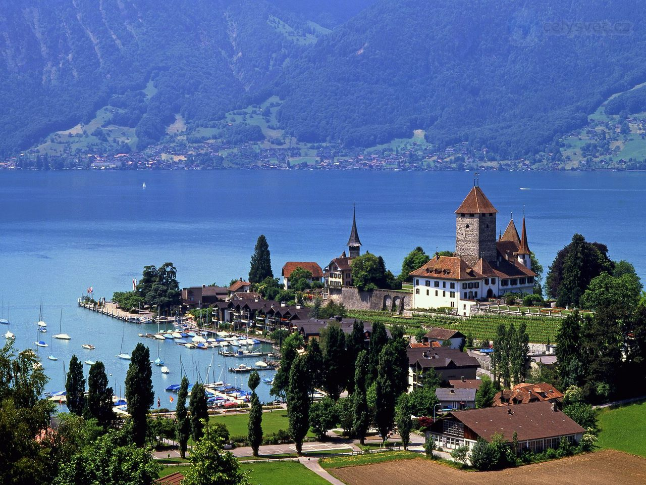 Spiez Switzerland  city photos gallery : TOP WORLD TRAVEL DESTINATIONS: Spiez, Switzerland