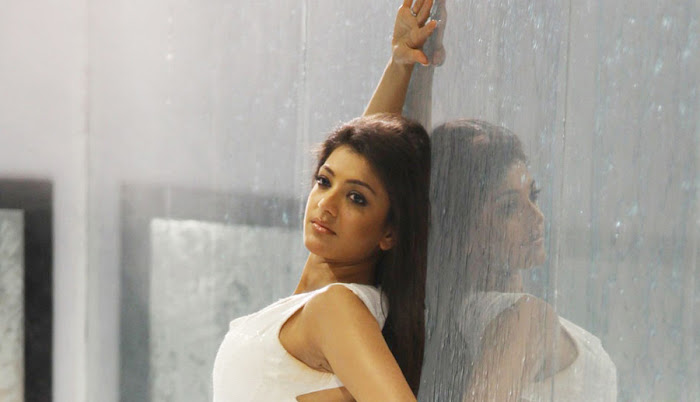 kajal agarwal , kajal agarwal photo gallery