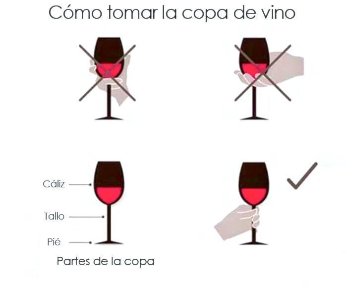 Como tomar una copa de vino correctamente