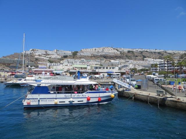 glass bottom ferry gran canaria