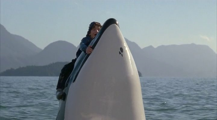 Free Willy 3 - O Resgate 1997 Filme 1080p 720p Bluray FullHD HD completo Torrent