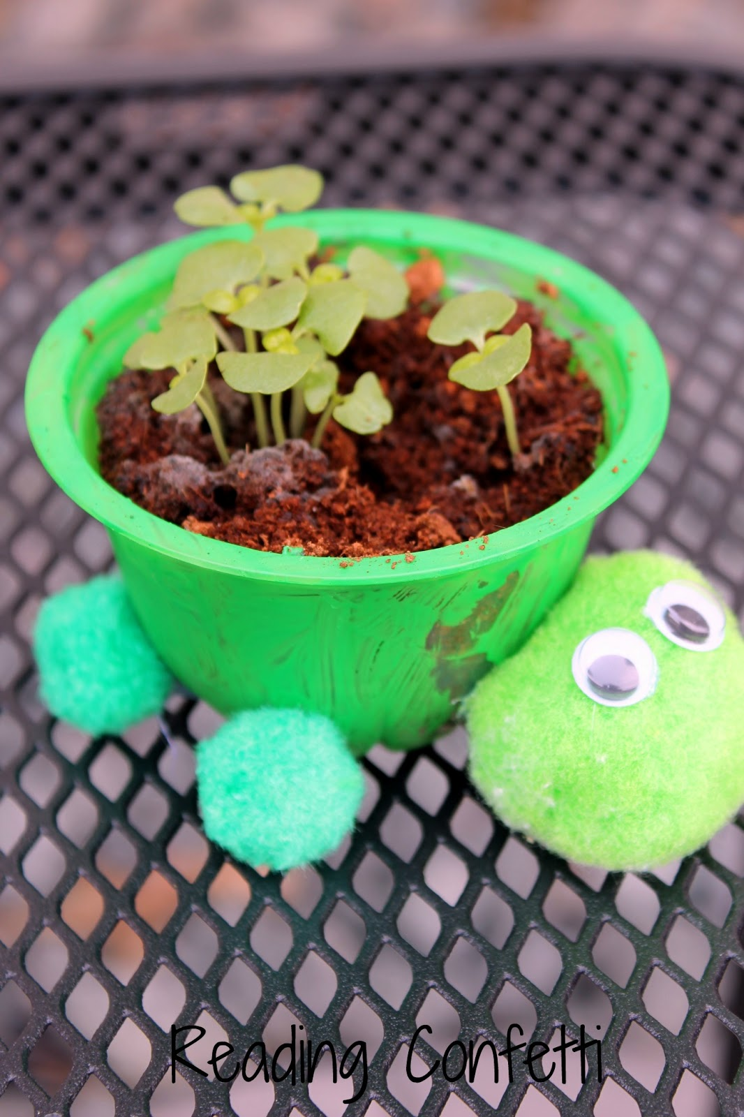 Kid Made Turtle Herb Planters Reading Confetti