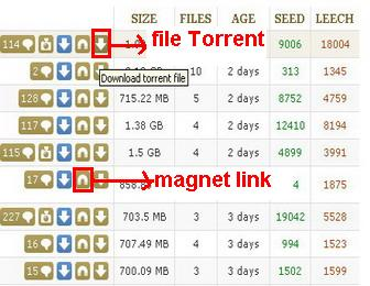 how to download on torrent search online engine