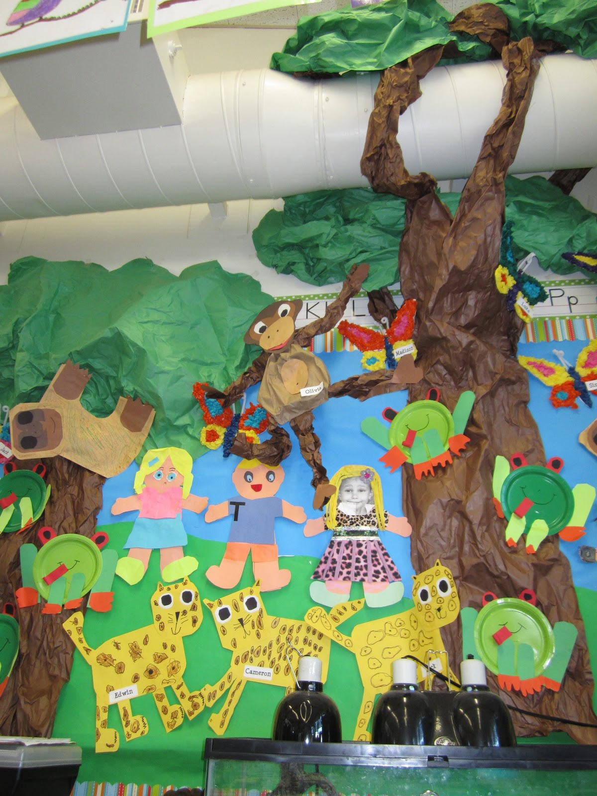 Rainforest Classroom Decor ~ Teacher bits and bobs it s a rainforest extravaganza
