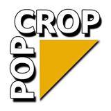 http://www.popcrop.pl/