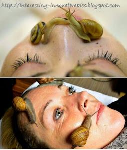 Ci: z.Labo snail slime skin care treatment in Beauty salon