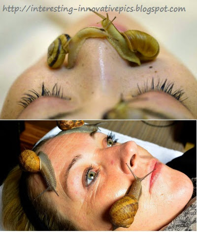 Interesting Science: Snail crawling on Face - Skin Care treatment
