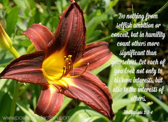 Phillipians 2:3-4