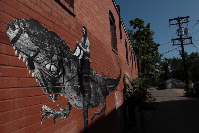 Some cool graffiti art of a guy riding an iguana in Greeley, Colorado.