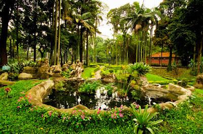 jardim da luz são paulo viajar parque