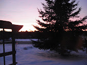 A winter morning's sunrise