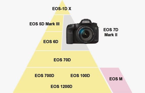 canon pricing strategy Canon announced the long awaited eos-7d mk ii camera on september 15 with a list price of $1,799 as you can see from the pyramid above, the new camera is lumped into the section with the.
