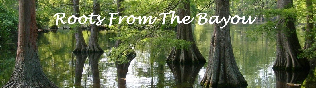 Roots From The Bayou