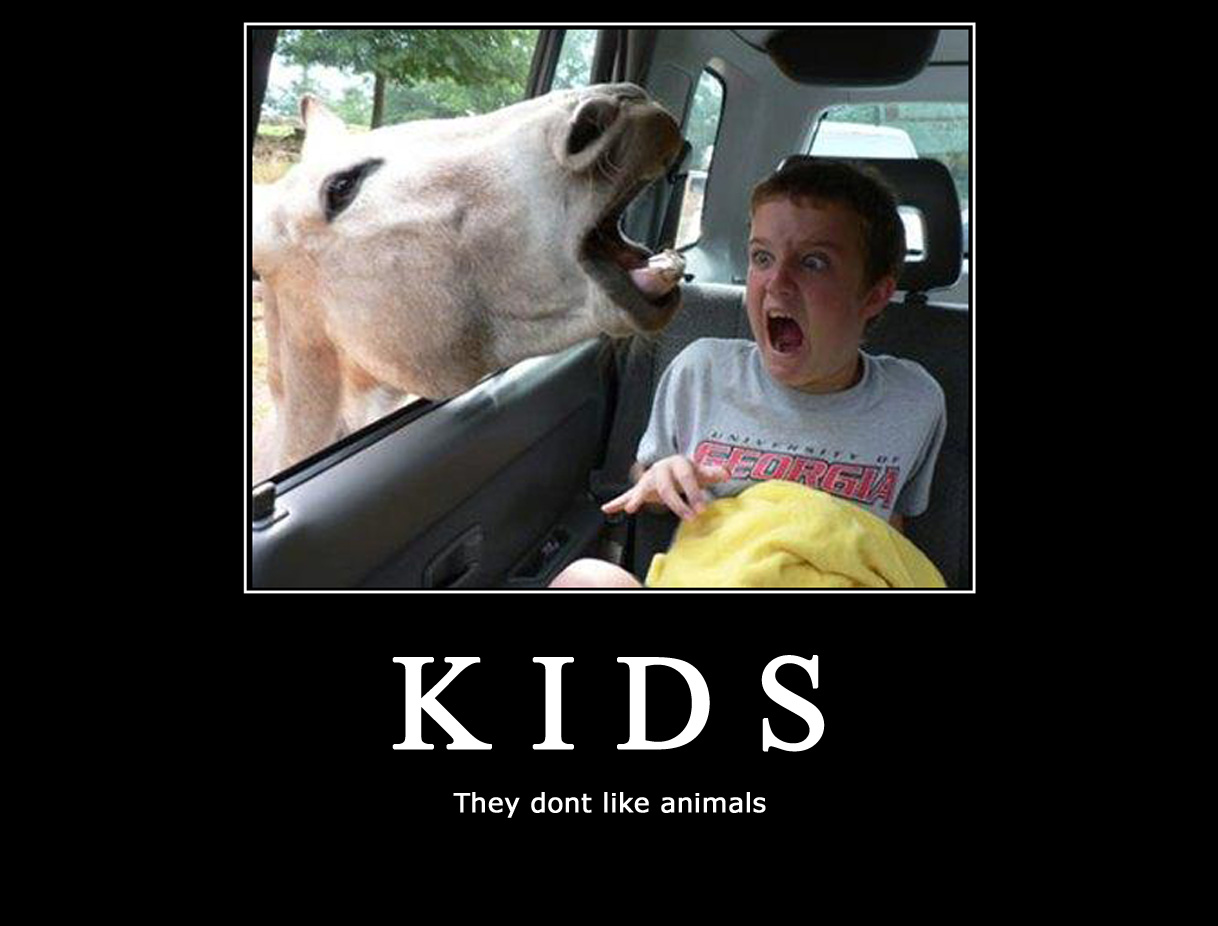 Kids Don't Like Animals