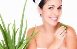 Manfaat Lidah Buaya Untuk Kesehatan dan Kecantikan Kulit