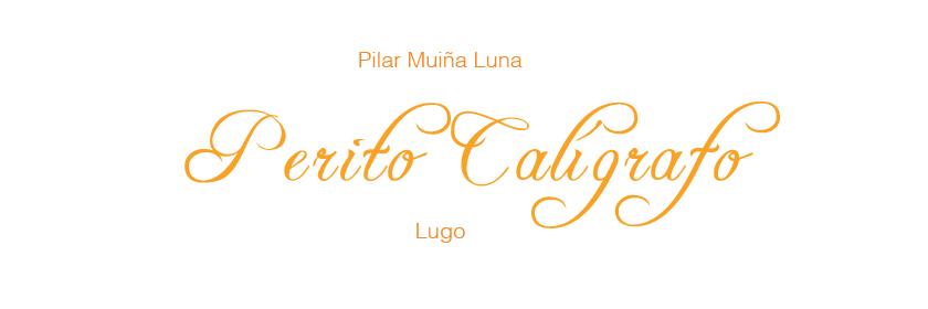 PERITO CALÍGRAFO - LUGO