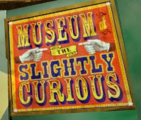 Museum Of The Slightly Curious