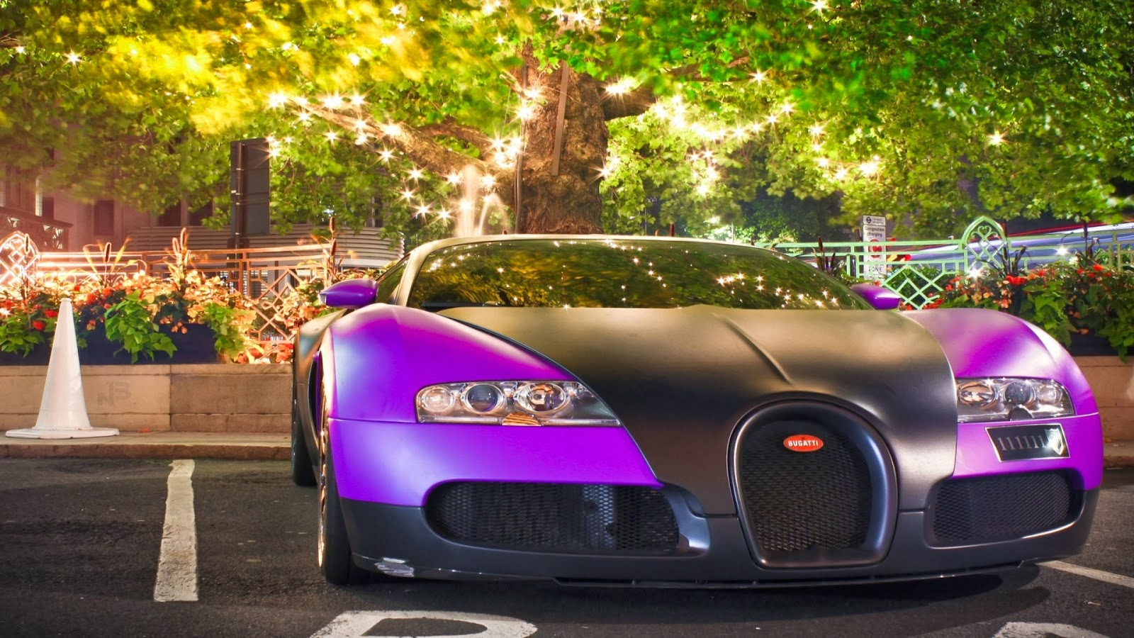 All Hot Informations: Download Bugatti Veyron Sports Cars ...