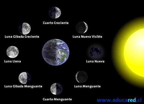Curiosidades del universo la luna de la tierra for Hoy es cuarto creciente