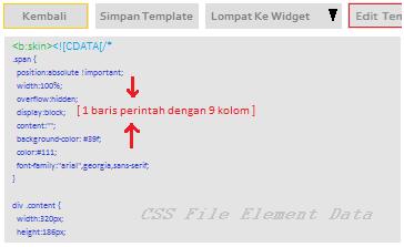 CSS input