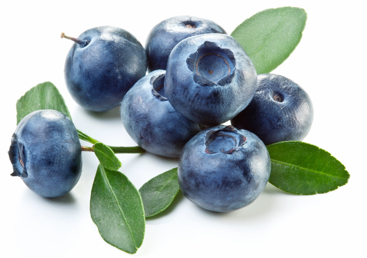 Blueberry extract could help fight gum disease and reduce ...