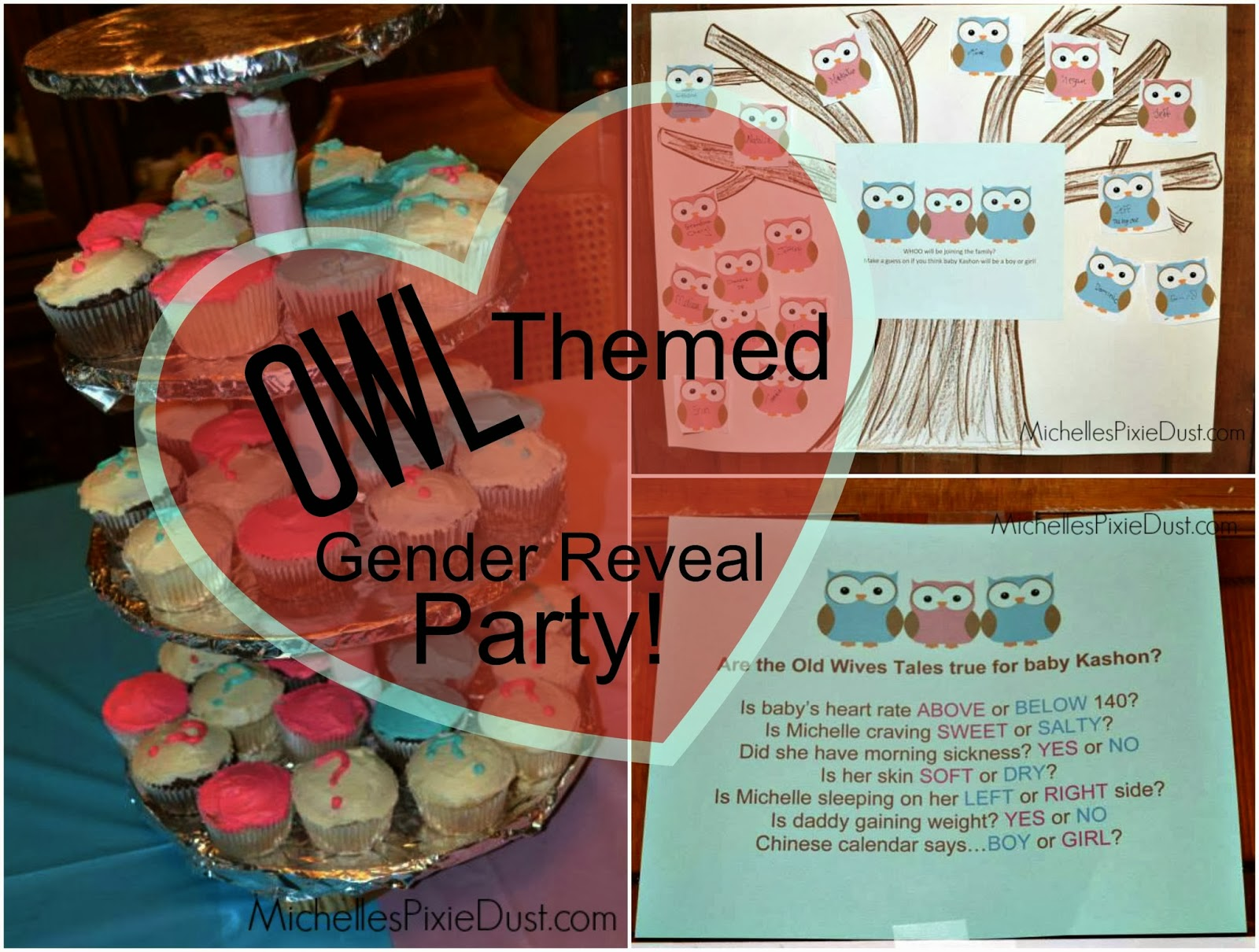 Owl Themed Gender Reveal