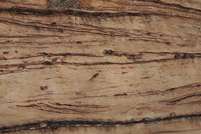 Download sedimentary rock textures for free