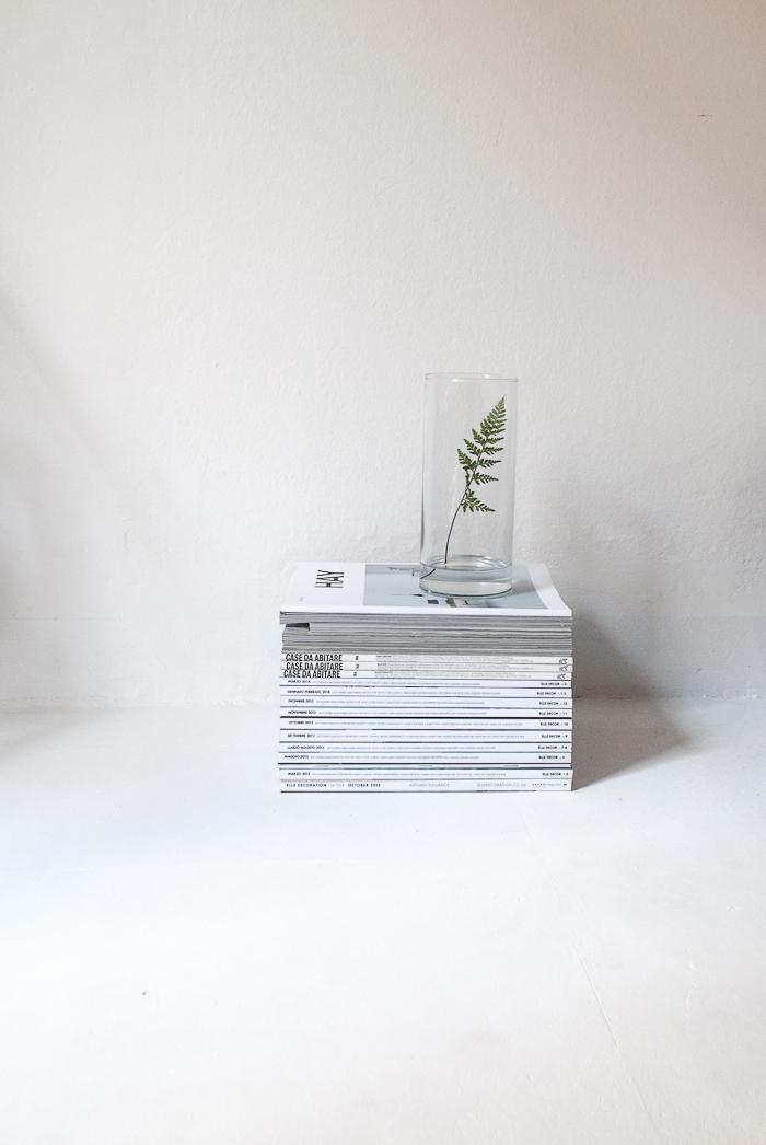 detalle verde, planta, dekoloop