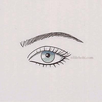 Göz Şekline Göre Doğru Kaş Modelleri