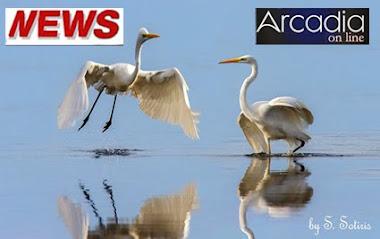 *ειδήσεις, νέα και ρεπορτάζ από τις παροικίες των Αρκάδων...*