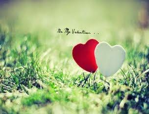Понуди за С.в Валентин