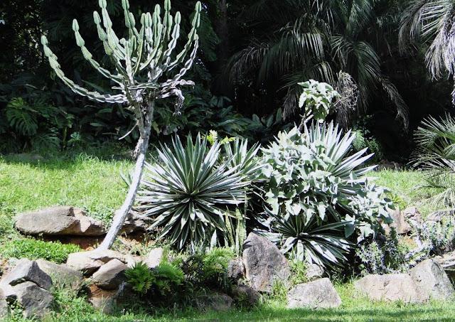 fotos jardim botanico porto alegre : fotos jardim botanico porto alegre:foto círio simon foto círio simon bromélia http www clicrbs